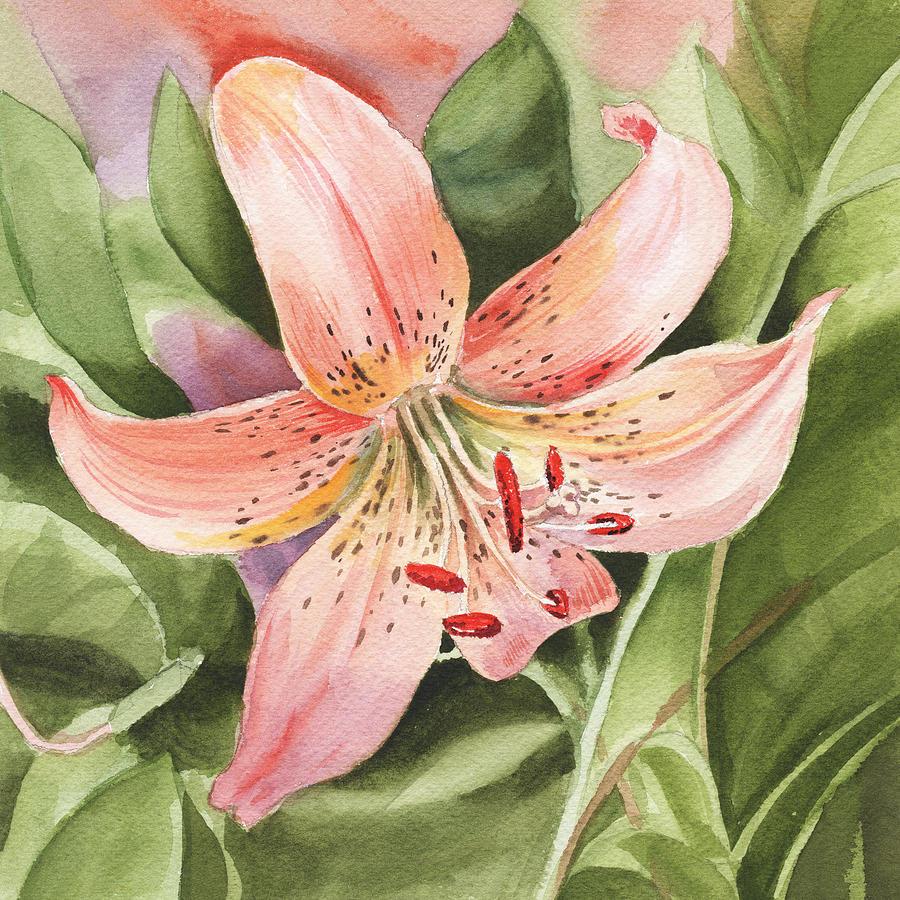 Tiger Lily Painting - Tiger Lily Watercolor by Irina Sztukowski by Irina Sztukowski