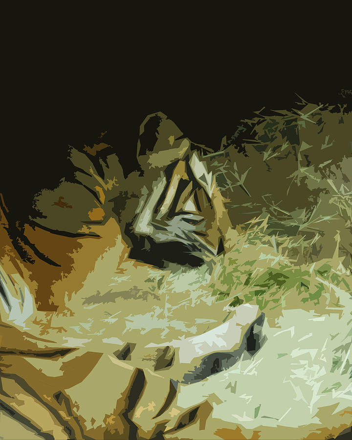 Abstract Photograph - Tiger by Maggy Marsh