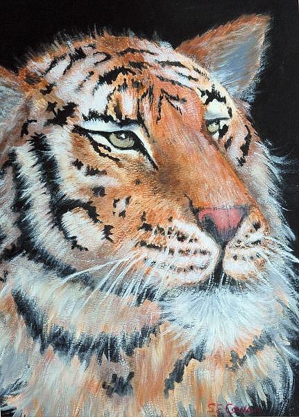 Tiger Painting - Tiger by SueEllen Cowan