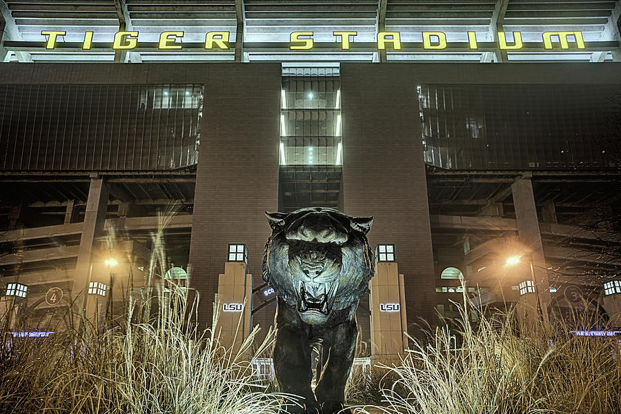 Mike The Tiger Photograph - Tiger Stadium On Saturday Night by JC Findley