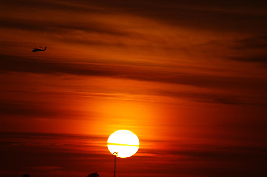 Sunset Photograph - Tiger Sunset by Don Prioleau