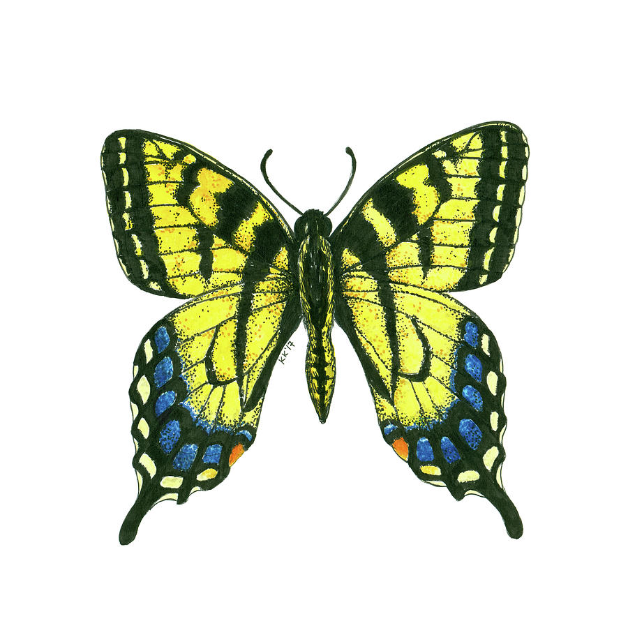 Tiger Swallowtail Butterfly Watercolor And Ink Art Painting by ...