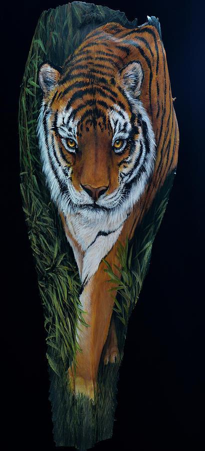 Tiger Tiger by Nancy Lauby