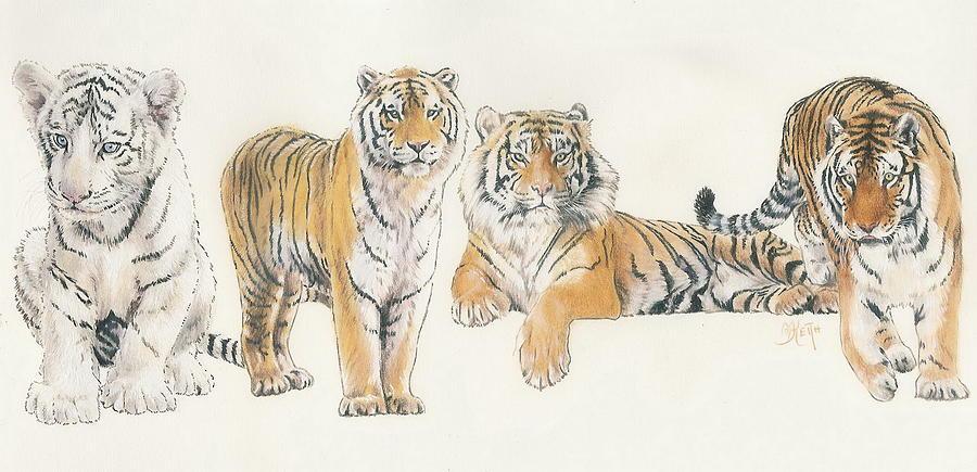 Tiger Mixed Media - Tiger Wrap by Barbara Keith
