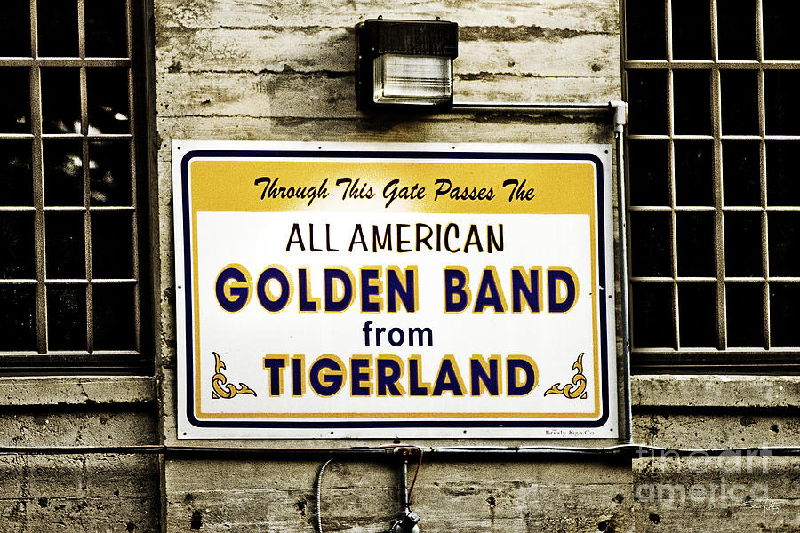 Tigers Photograph - Tigerland Band by Scott Pellegrin