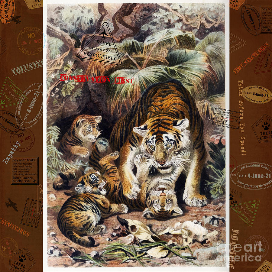 Asian Wildlife Digital Art - Tigers For Responsible Tourism by Nola Lee Kelsey