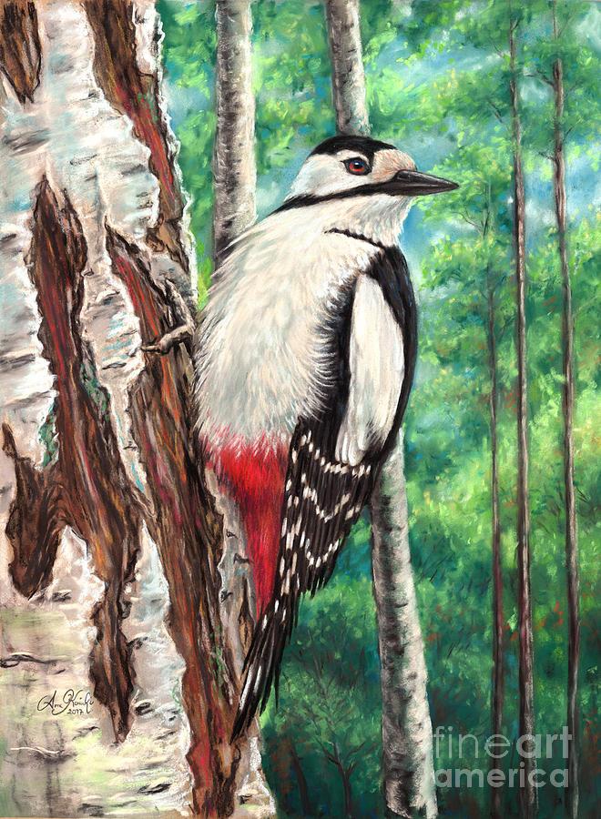 Woodpecker Pastel - Tikkataulu by Anne Koivumaki - Fine Art Anne