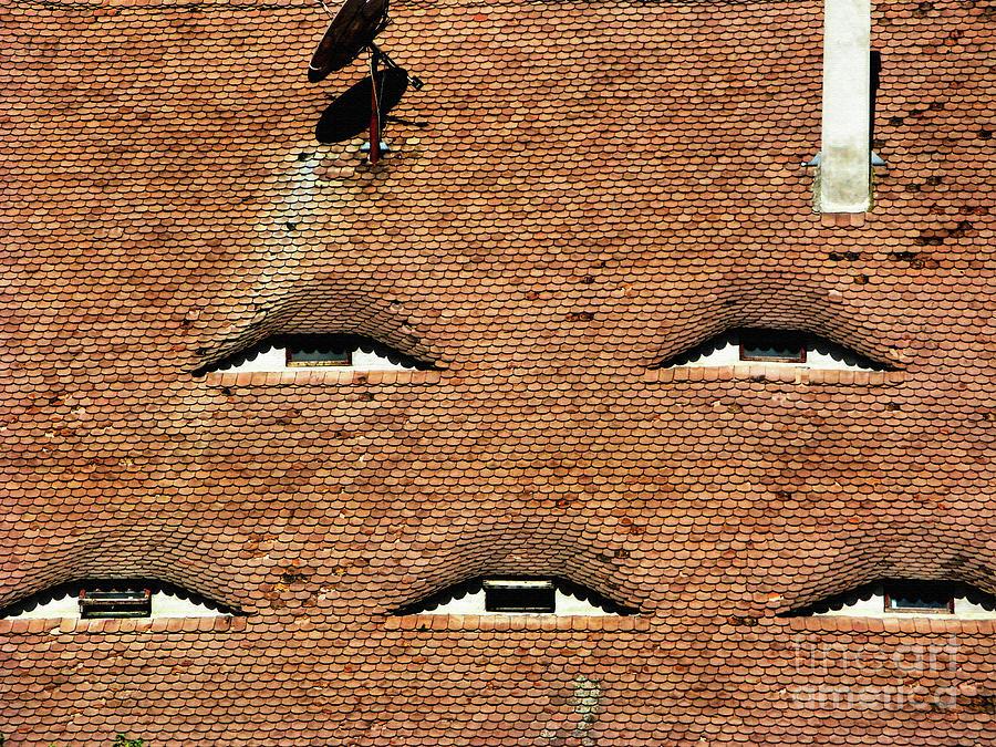 Tile Roof In Medieval Sibiu Eye-shaped Windows