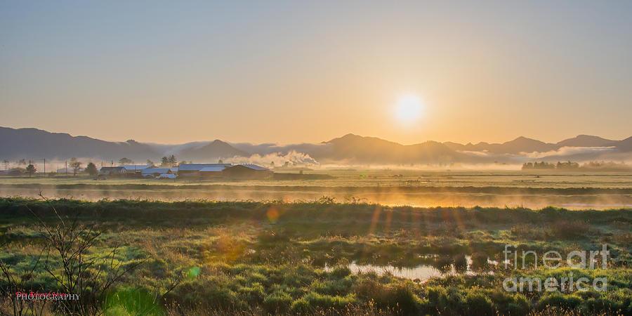 Tillamook Morning by Don Edward Jones