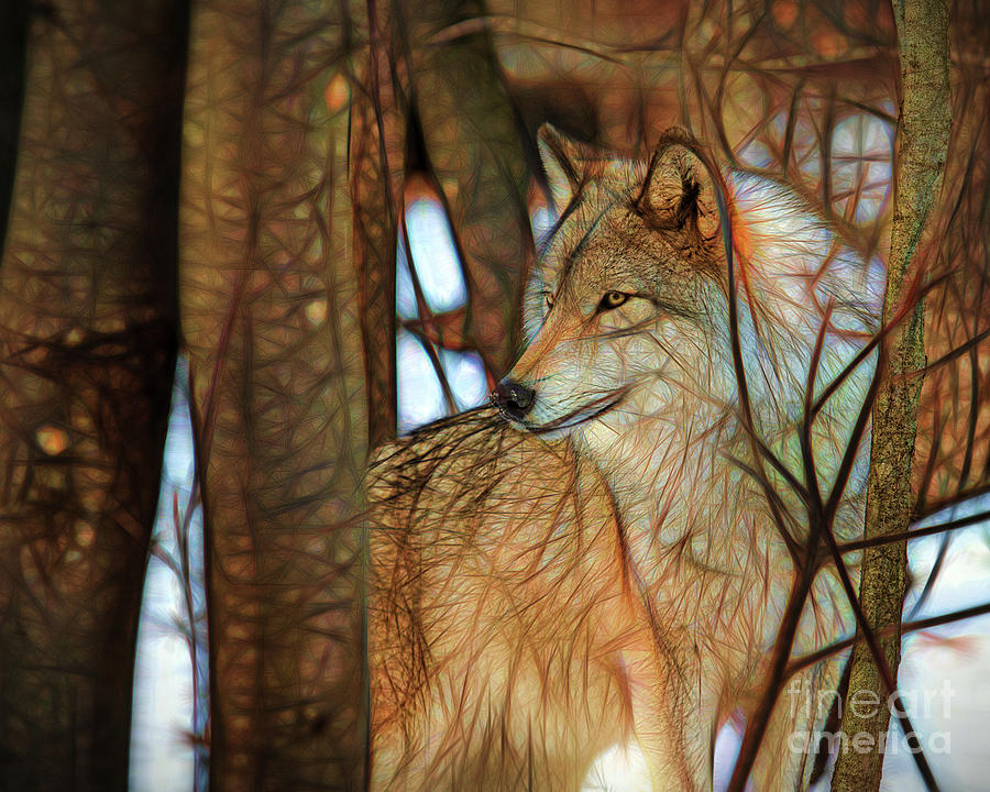 Timber Wolf Colorful Art Photograph