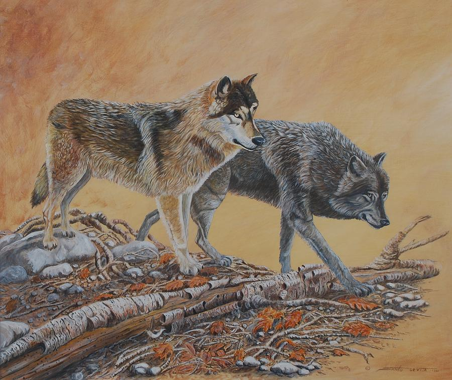 Timber Wolves Painting by Santo De Vita
