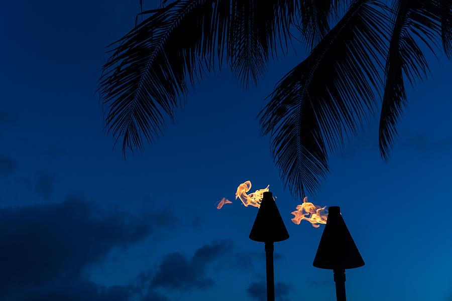 Time to Party - Tiki Torches on the Beach by Georgia Mizuleva