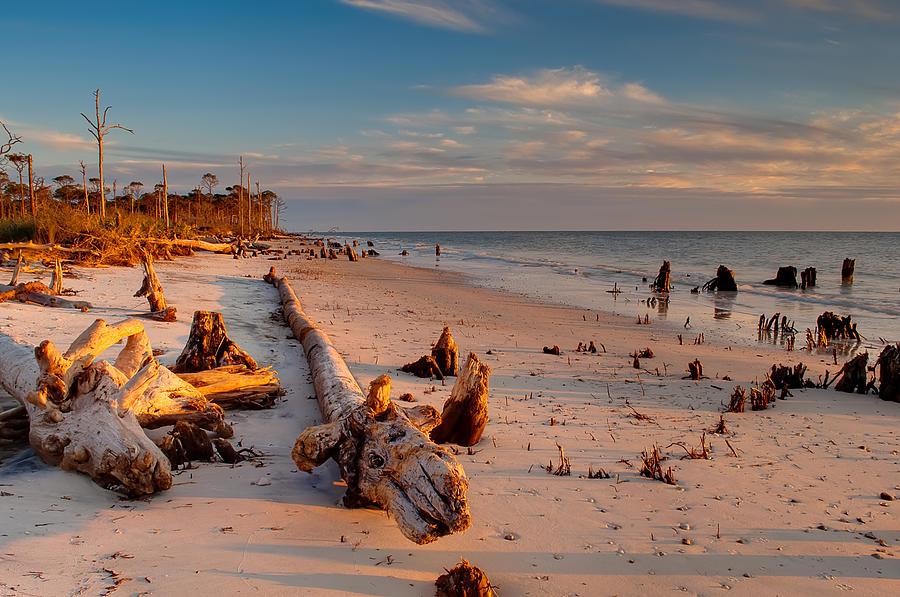 Driftwood Photograph - Timeless Florida Beach by Rich Leighton