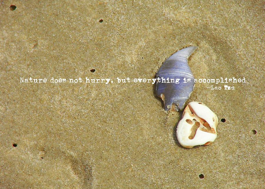 Beach Photograph - Timeless Nature Quote by JAMART Photography