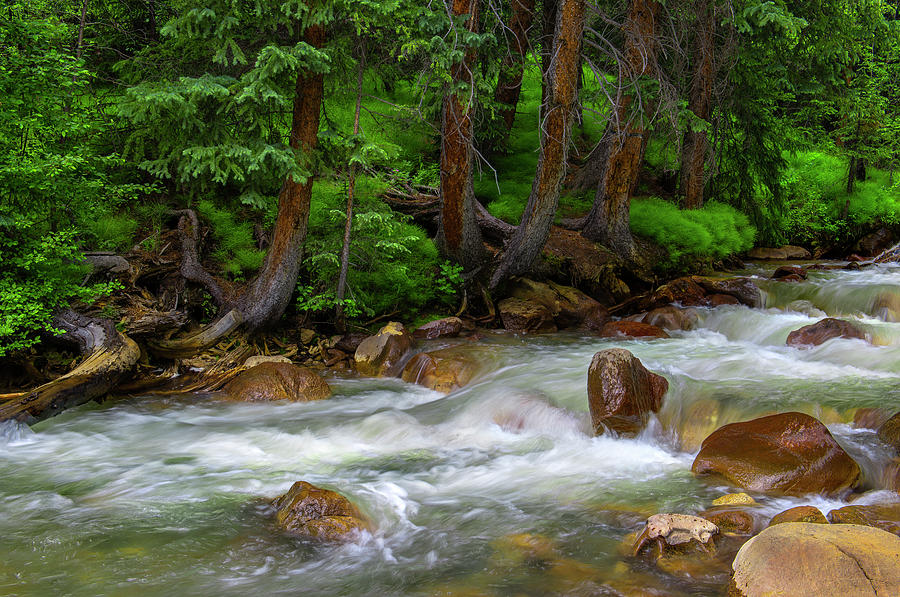 Creek Photograph - Timeless by Tim Reaves