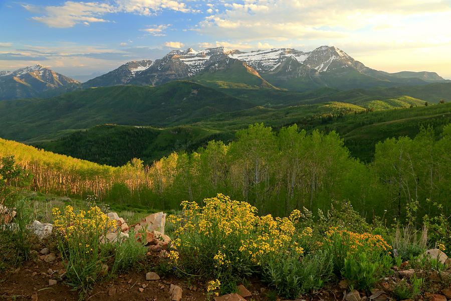 Utah Photograph - Timpanogos From Mill Canyon Peak. by Johnny Adolphson