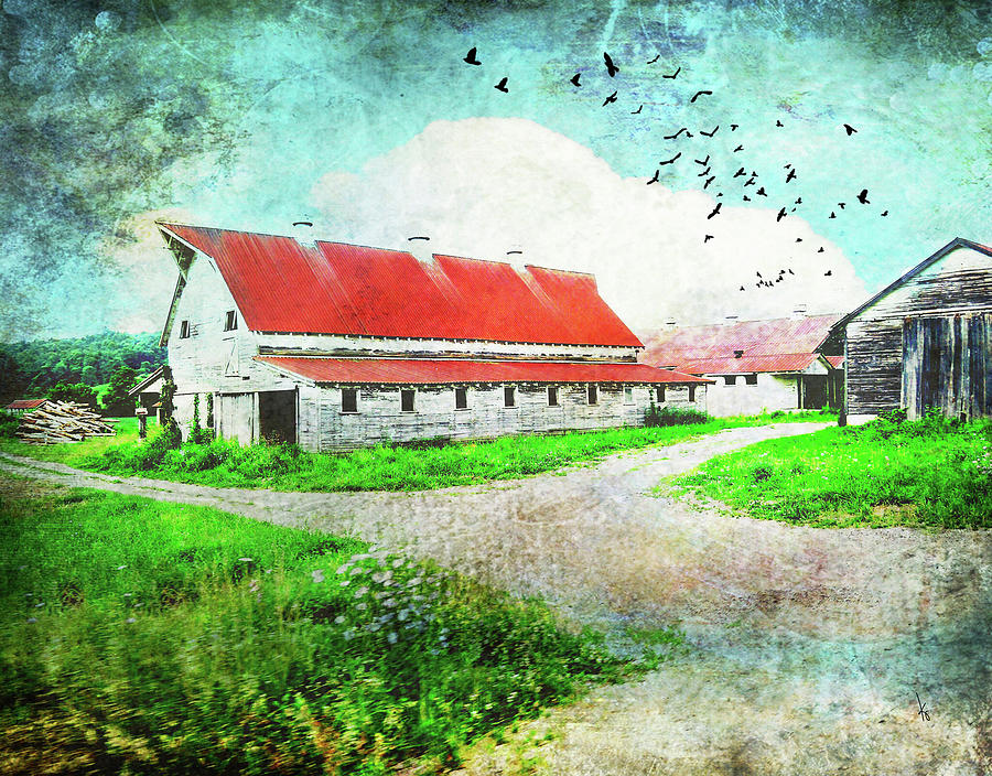Tin Roof Digital Art - Tin Roof Barn by Krista Droop