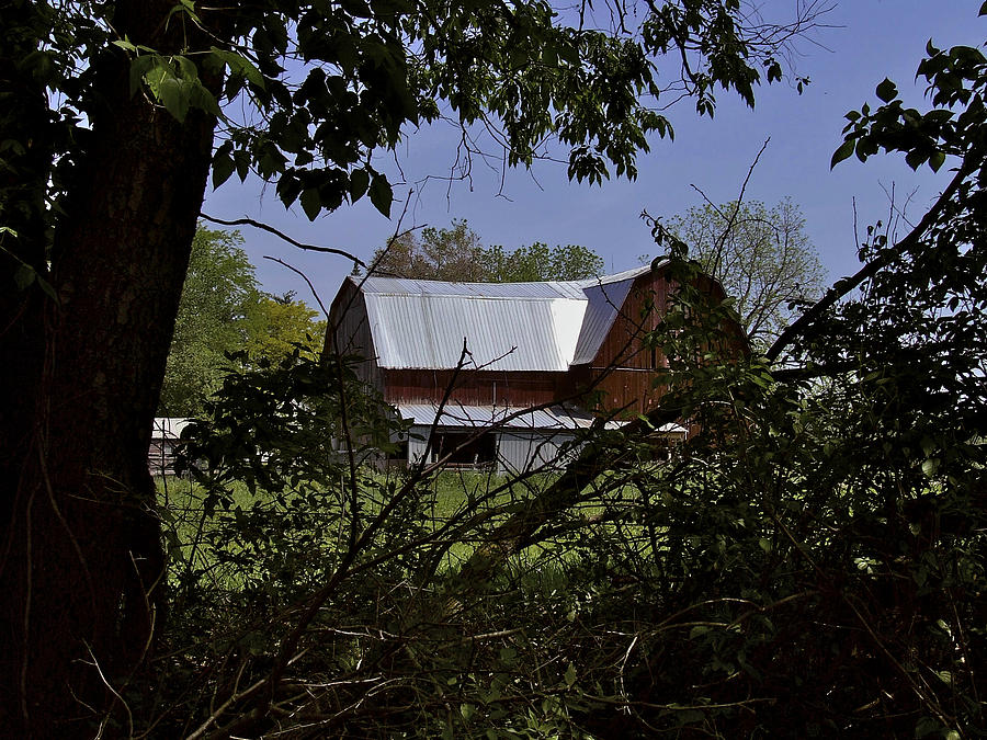 Tin Roof Photograph - Tin Roofed Barn by Richard Gregurich