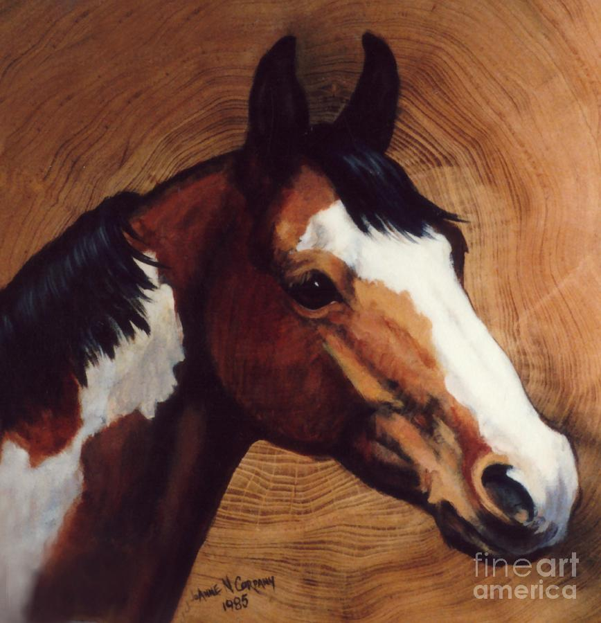 Fancy Painting - Tingeys Fancy   Paint Horse by JoAnne Corpany