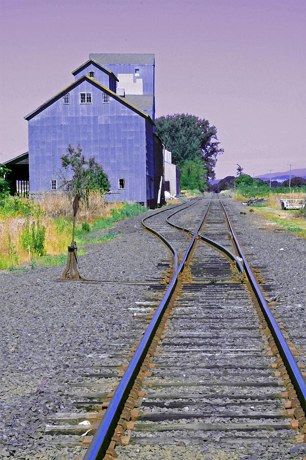 Railroad Tracks Digital Art - To Nowhere by Margaret Hood