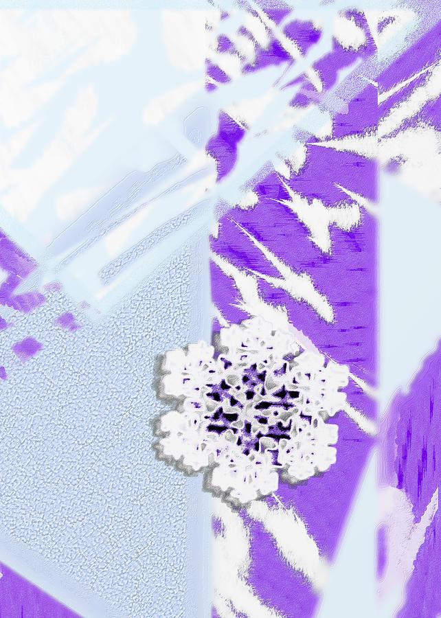 Winter Digital Art - To Save A Snowflake, Portrait Orientation by Mathilde Vhargon