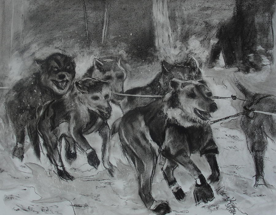 Huskies Drawing - To The Finish by Diana Kaye Obe