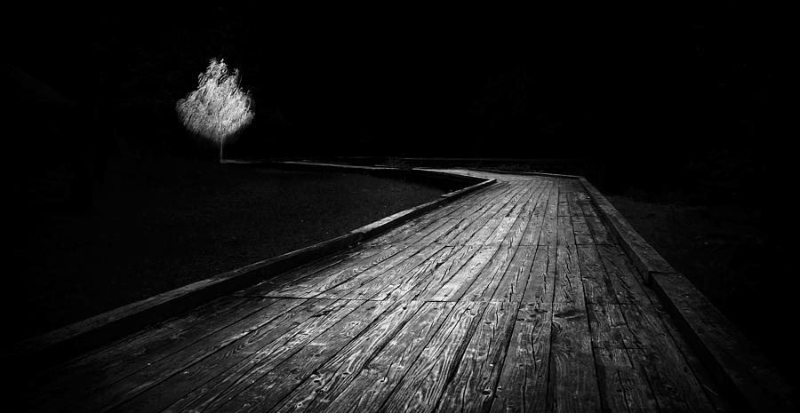 Blackandwhite Photograph - Destiny   by Ahmed Shanab