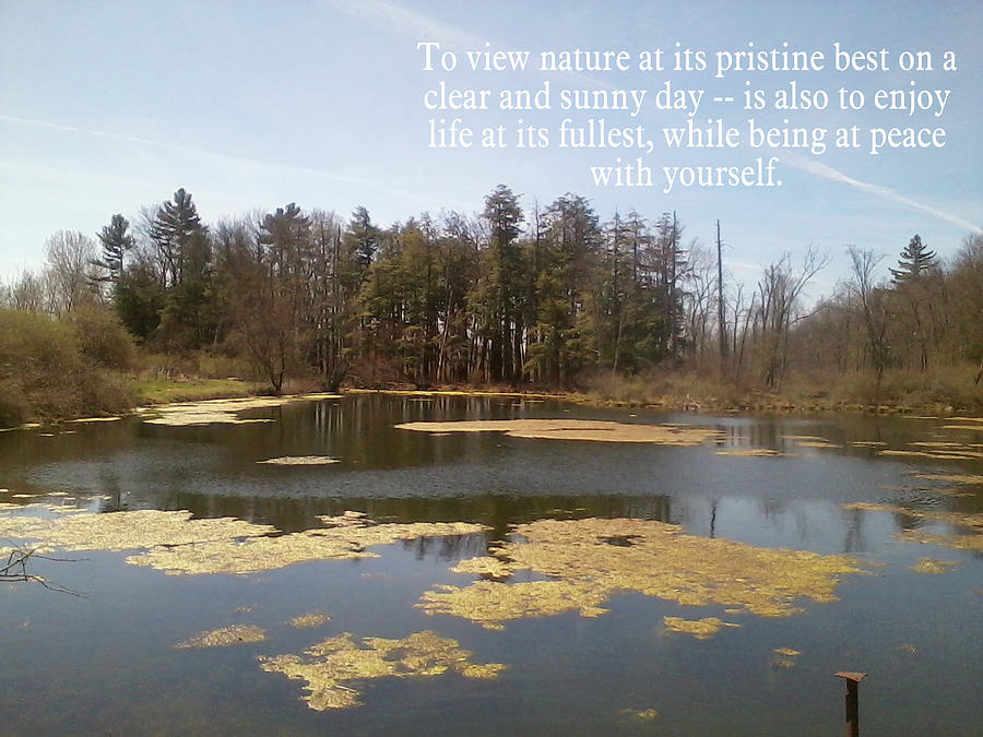Nature Photograph - To View Nature, Enjoy Life And Be At Peace by John Lavernoich