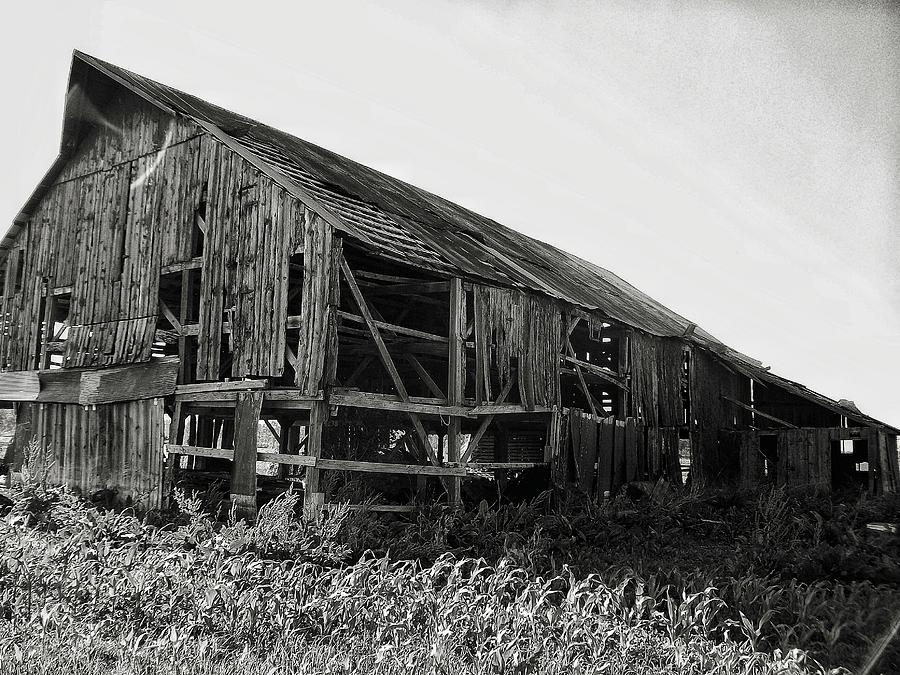 Barn Photograph - Tobacco Barn 1 by Dustin Soph