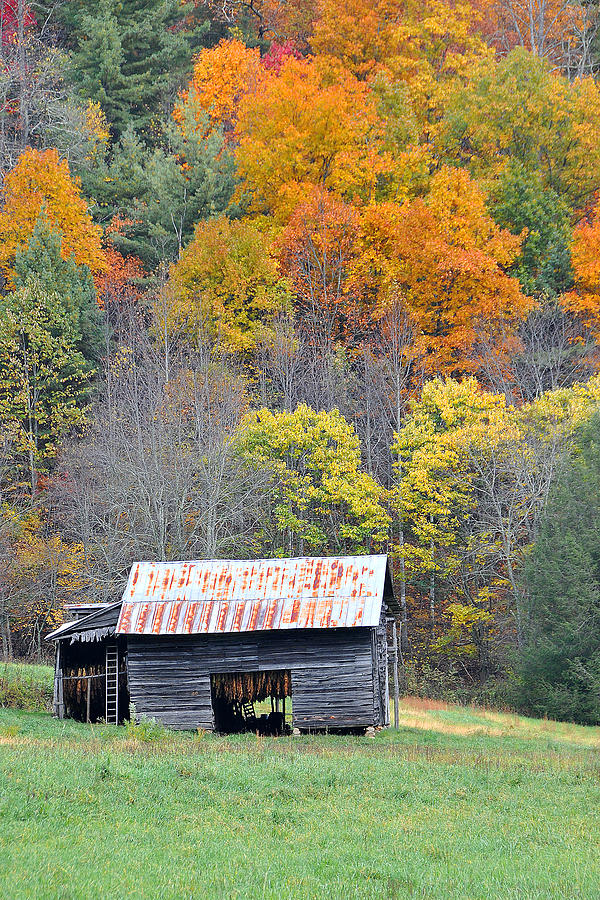 Tobacco Barn Photograph - Tobacco Barn by Alan Lenk