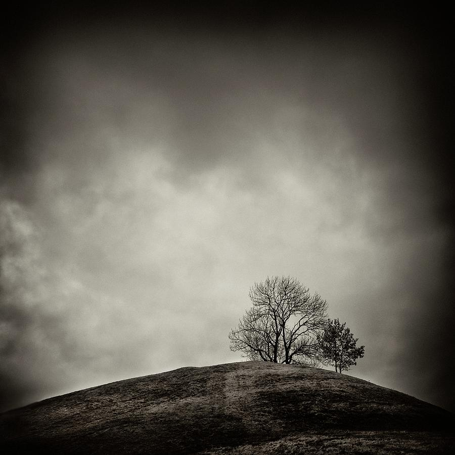 Nature Photograph - Tobias Hill by Jaromir Hron