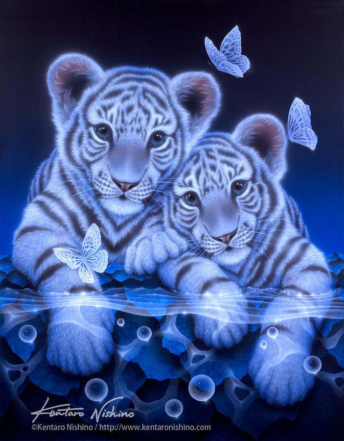 Together - White Baby Tiger