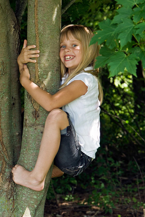 Tree Photograph - Tom Boy by Maria Dryfhout