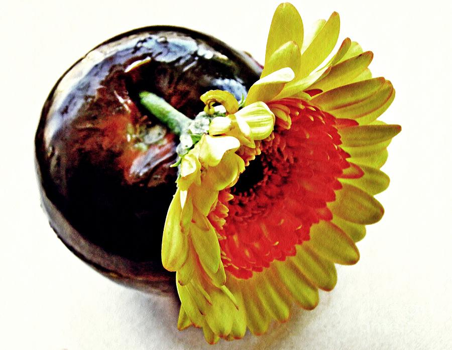 Tomato Photograph - Tomato And Daisy by Sarah Loft