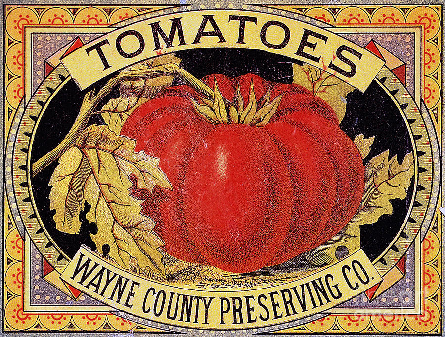 20th Century Photograph - Tomato Can Label by Granger