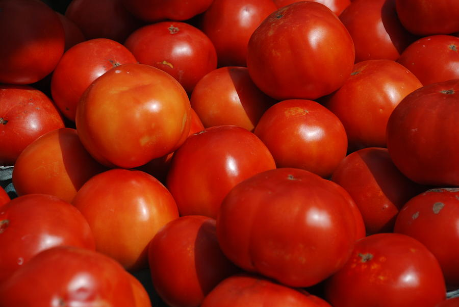 Nature Photograph - Tomatoes by William Thomas