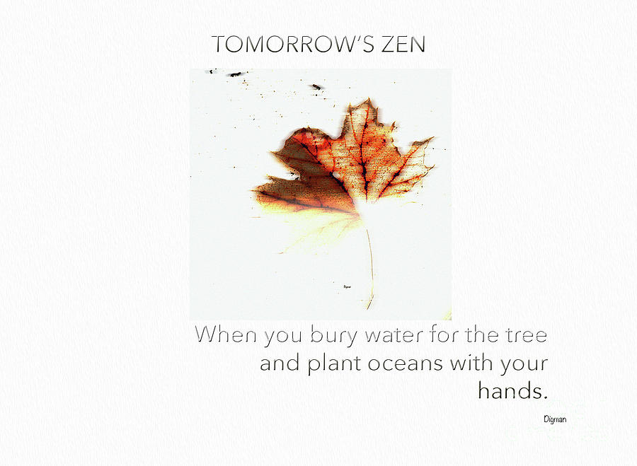 Zen Photograph - Tomorrows Zen  by Steven Digman