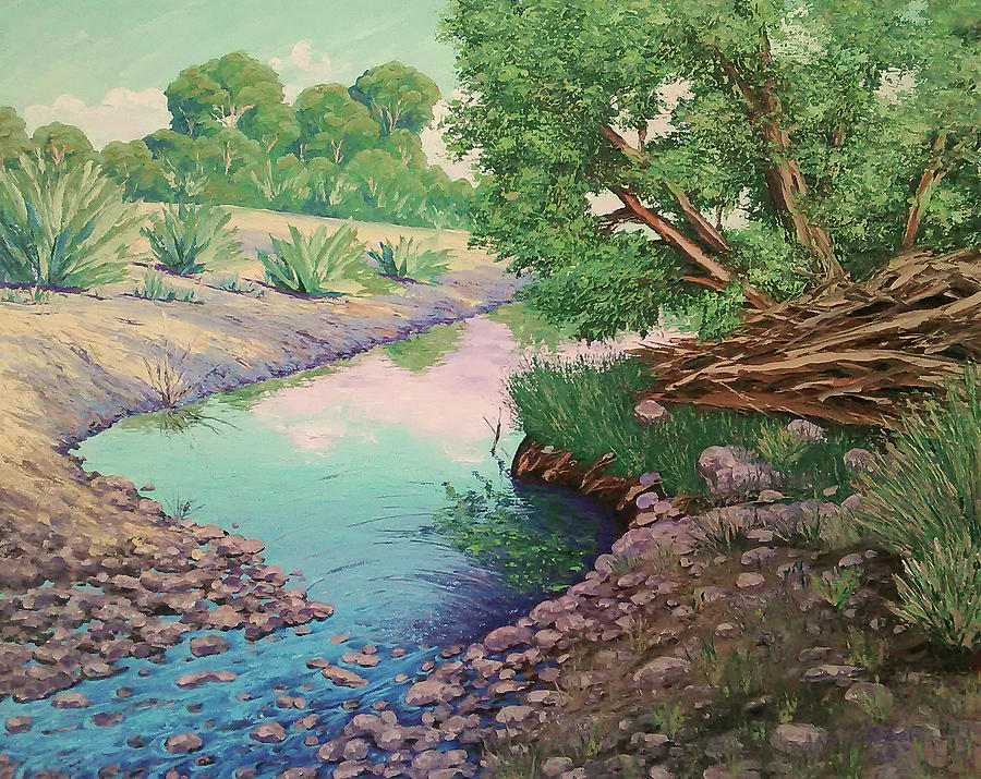 Tonto Creek by Cheryl Fecht