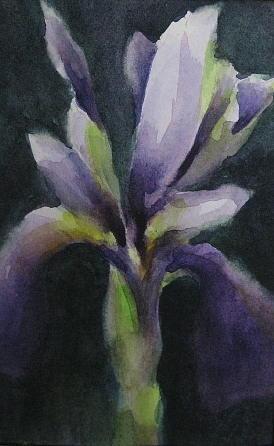 Iris Painting - Too Brief by Debra LePage
