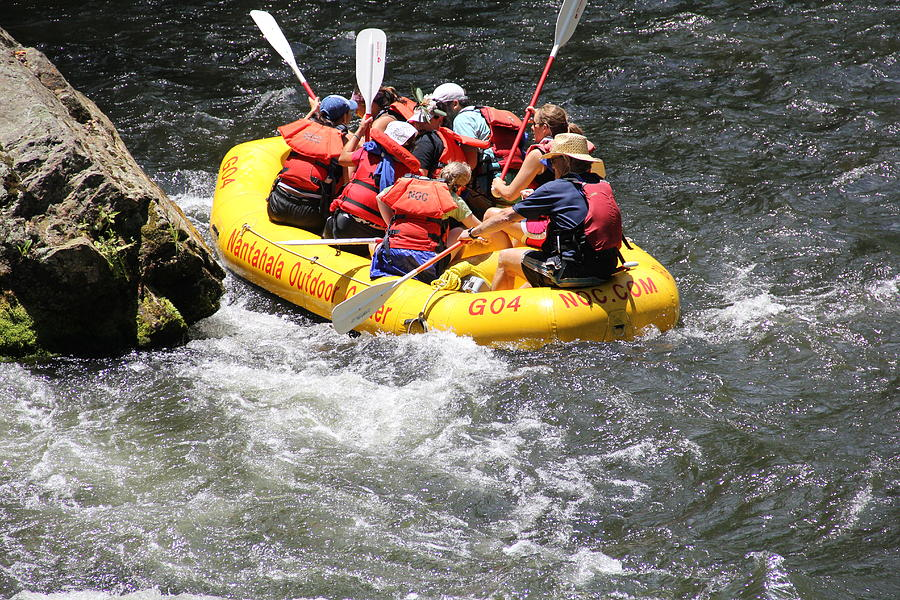 Rafting Photograph - Too Close Rafting by Allen Nice-Webb