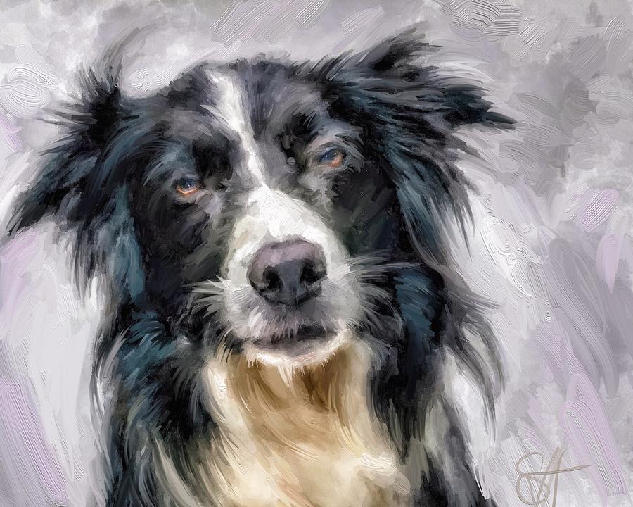 Border Collie Digital Art - Top Dog by Scott Waters