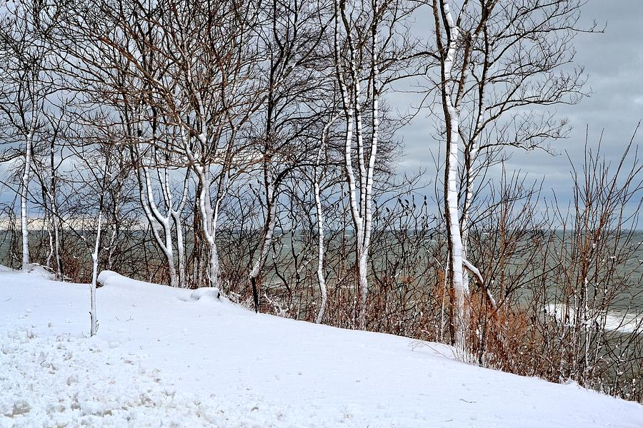 Season Photograph - Top Of The Bluff by Michelle Calkins