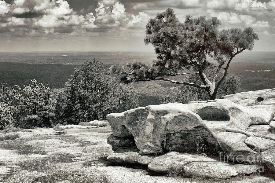 Top Of The Mountain by Tom Gari Gallery-Three-Photography