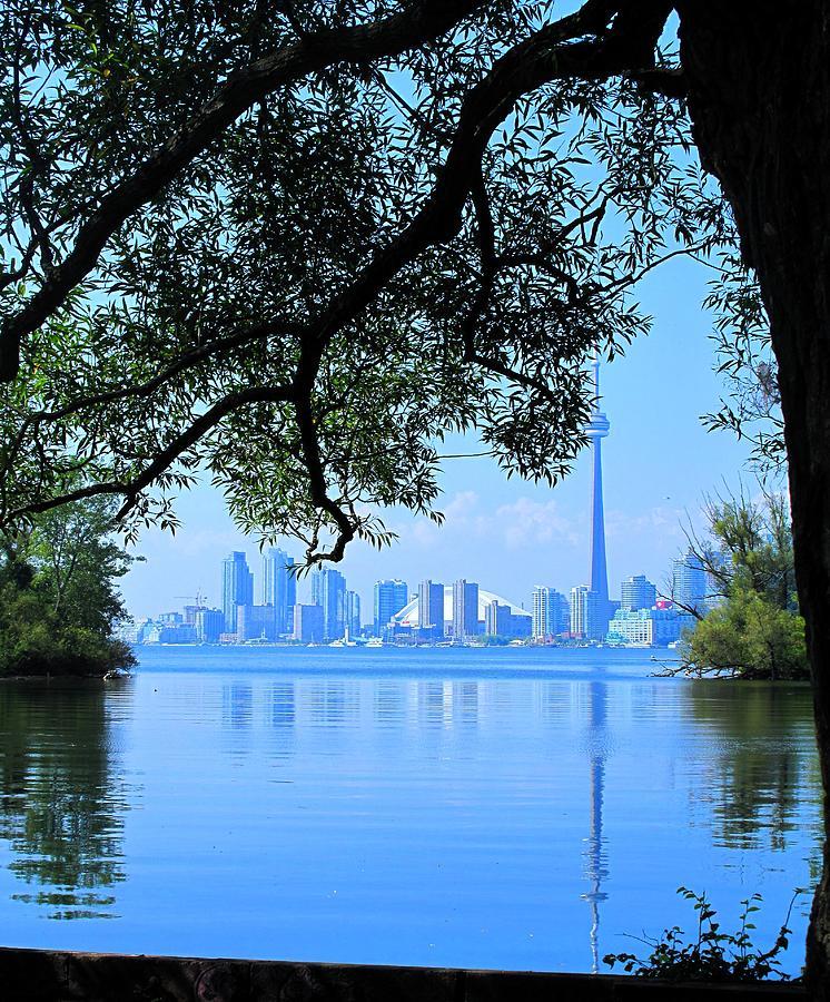 Cn Tower Photograph - Toronto Framed by Ian  MacDonald