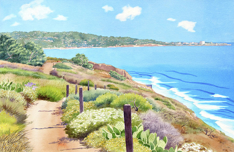 Torrey Pines and La Jolla by Mary Helmreich