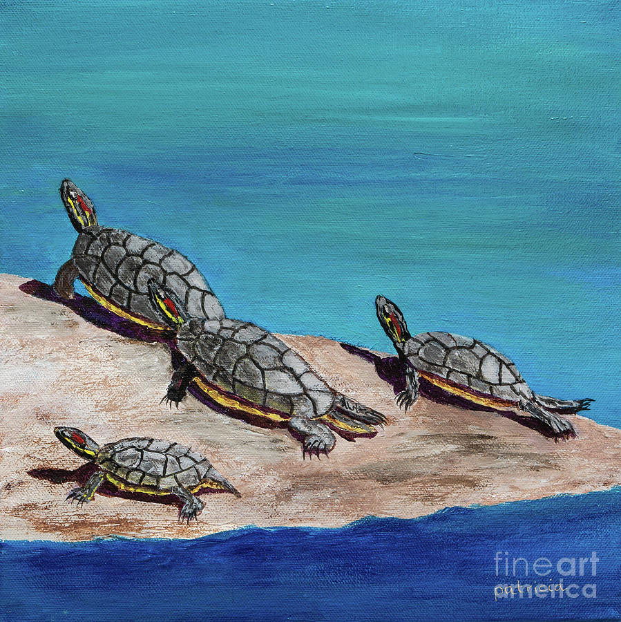 Tortugas Tranquillas by Patricia Gould