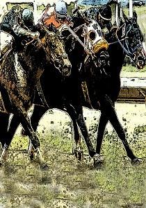 Horse Racing Digital Art - Toss Up by Gary Rogers