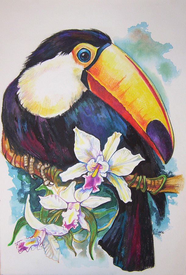 Toucan And Orchids Painting by Lilian Barac
