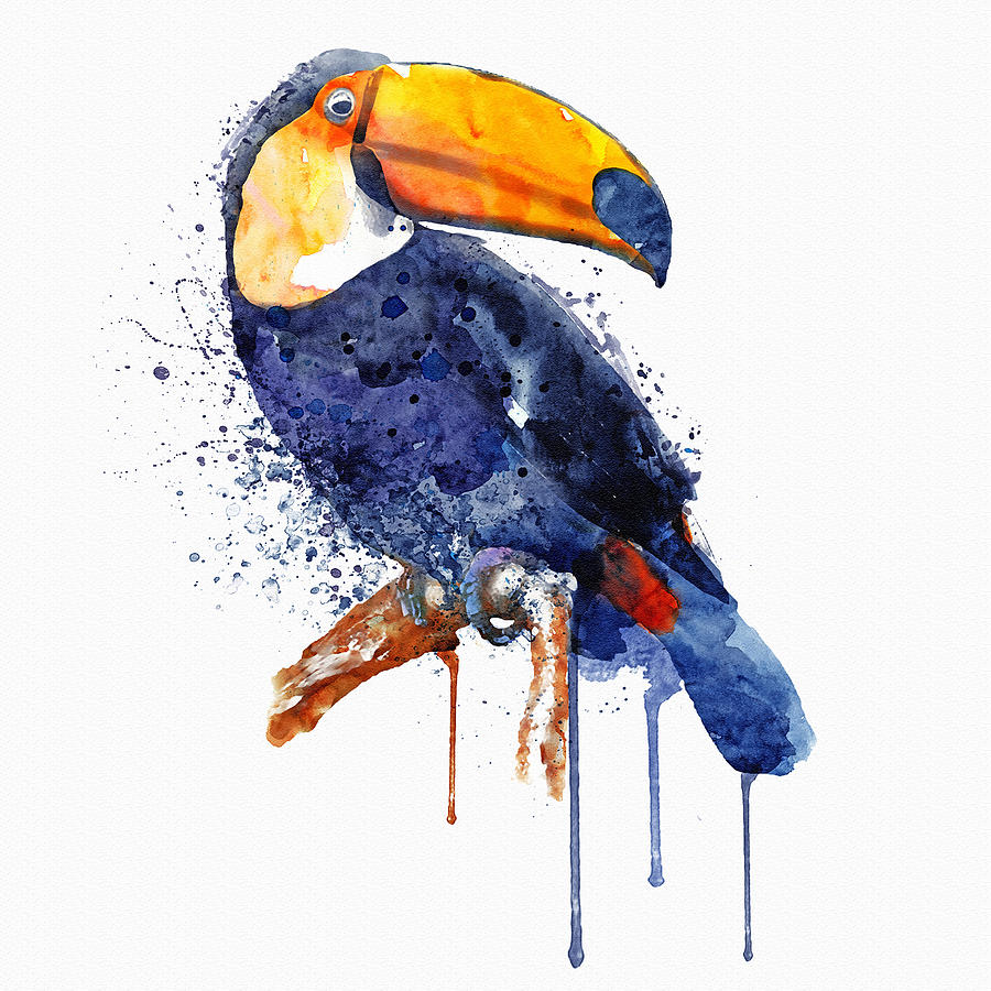 Toucan Mixed Media By Marian Voicu