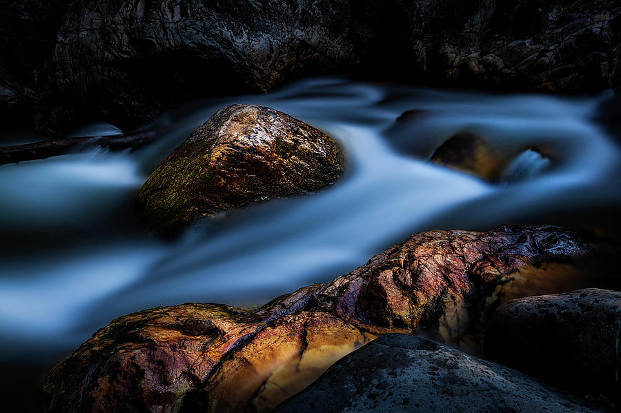 Touch of Sunlight by Paul Bartell